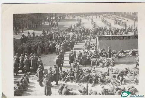 组图:不义战争祸害世界--德苏战场上的德军(6)