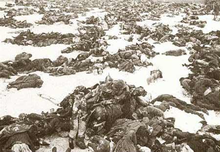 图文:城南和伏尔加河之间尸体