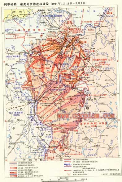 列宁格勒―诺夫哥罗德战役