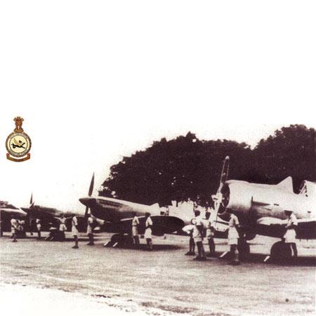 印度空军第6中队1939-1945年战史(组图)