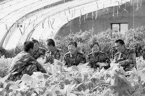 """新疆阿里高原藏族女军医让丈夫在家当""""奶爸"""""""