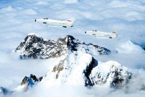 兰空飞行员战机遇鸽群保护群众放弃跳伞牺牲