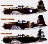 图文:美英中三国空军P-66战斗机涂装