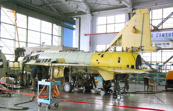 """巴基斯坦""""枭龙"""":FC-1轻型战斗机"""