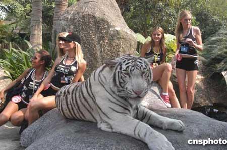 广州:世模演绎美女与野兽组图