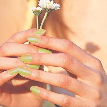每每见到女孩子们手指甲上漂亮如蝴蝶般飞舞的