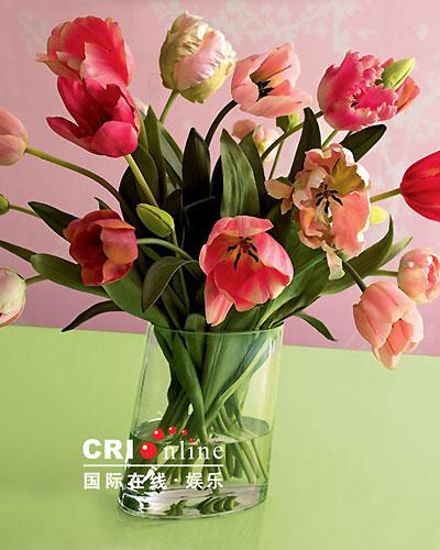 要体现室内花卉装饰的艺术感,应当讲究的是:构图美,色彩美和摆设美.图片