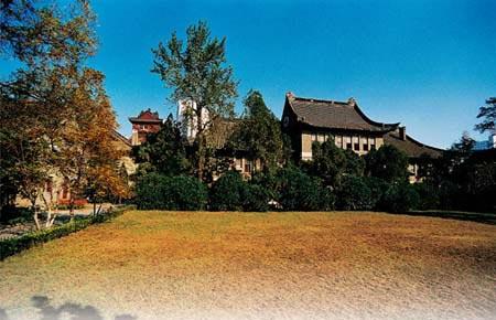 校园秋色大比拼 南京大学图片