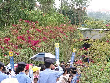 图文-2005年亚日朝王杯决赛轮保安人员忠于职守