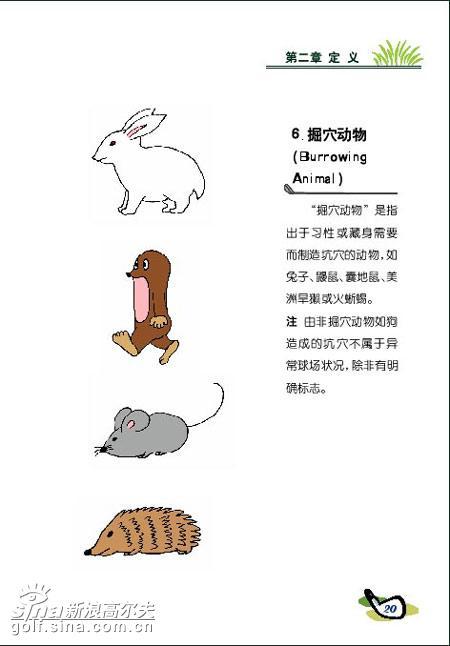 图文-新高尔夫规则图解连载[定义]掘穴动物