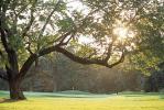 图文-87届PGA锦标赛承办球场密林深处别有洞天