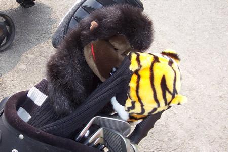 图文-业巡赛长沙站首轮球包秀猩猩伴着老虎睡