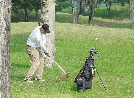 图文-Volvo青少年冠军赛收杆选手树下长草救球