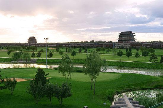 图文-第一城高尔夫球场小树星罗棋布别具一格