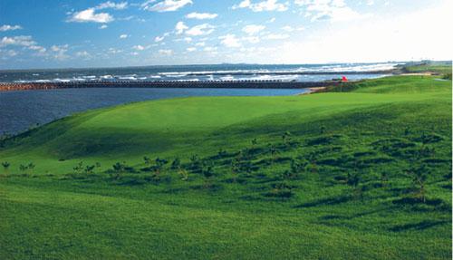 图文-南山国际高尔夫球场果岭风景一览无遗