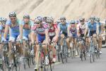 图文-环青海湖自行车赛第五赛段每个车队自成方阵