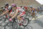 图文-环青海湖自行车赛第五赛段五颜六色的车服