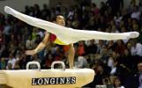 图文-体操世锦赛中国男团夺冠肖钦鞍马英姿