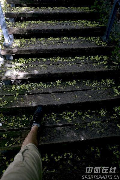 图文-世乒赛举办地萨格勒布掠影老旧的木质阶梯