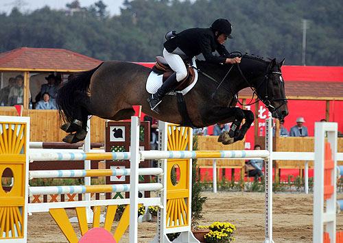 图文-十运马术比赛今日将结束上海选手驾马过栏