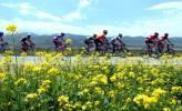 图文-第四届环青海湖国际公路自行车赛第2赛段结束
