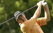 南非雄鹰振翅翱翔高尔夫球坛古森被遗忘的时光