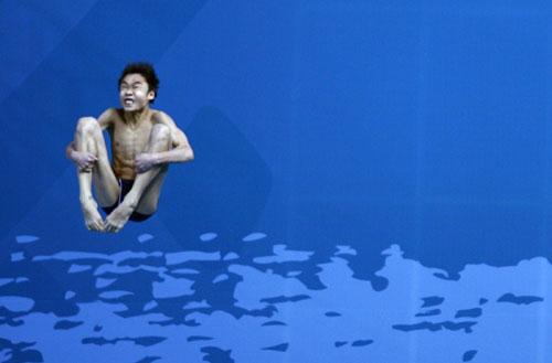 披星戴月飞越迷雾水中蝴蝶飞舞--路透社年度精选图
