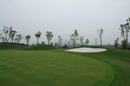 金鸡湖高尔夫球场的links九