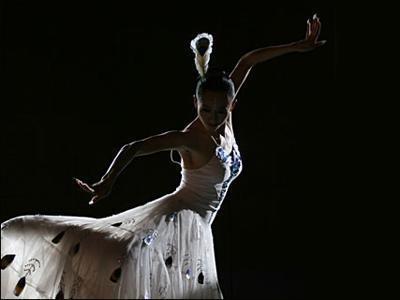 博鳌论坛慈善晚宴:杨丽萍的孔雀舞令人叫绝