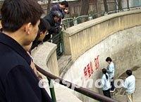 """刘海洋伤熊事件结局_图文:""""留爱心,勿投喂""""北京动物园刷写新标语"""