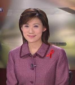 安徽卫视新闻主持人_台湾新闻节目主持人 湾湾有多重要你造吗?